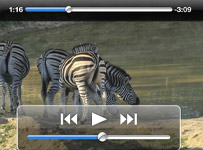 iPad app Africa Uncovered video player