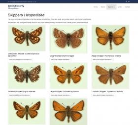 Species Page design